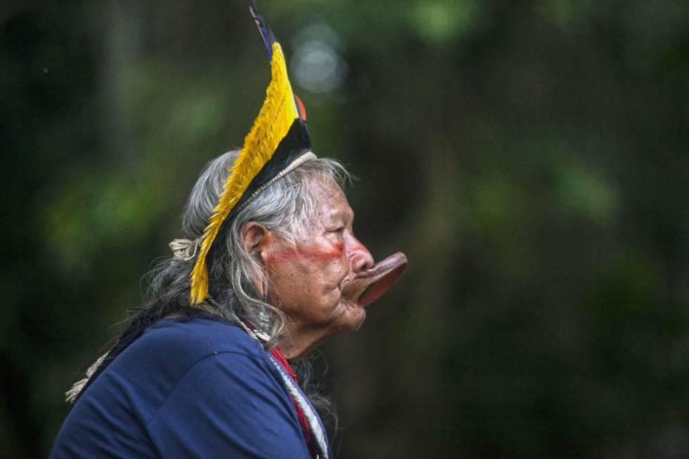 """""""El dinero sirve para vigilar la selva pero hay que implicar a los políticos"""""""