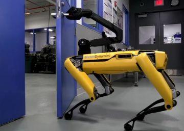 El robot que ha aprendido a abrir puertas para ayudar a sus ?amigos?