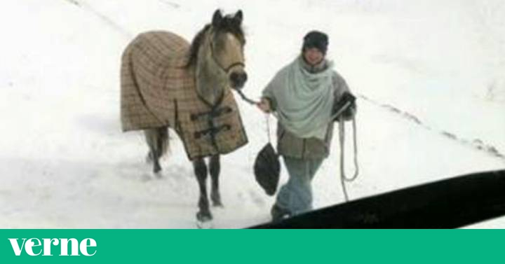 Resultado de imagen de Una chica de 18 años recorre 20 kilómetros de nieve a caballo para ayudar a un camionero